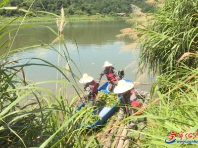 宁化城南镇:成立生态综合管护队 守护青山绿水